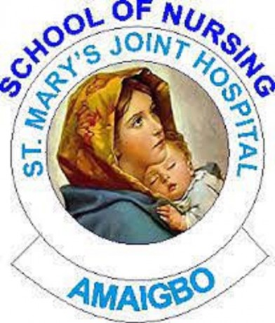school-of-nursing-amaigbo-imo-state-20212022-session-admission-forms-are-on-sales-big-0