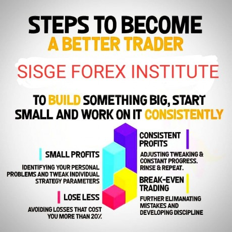 be-a-professional-forex-trader-at-sisge-forex-institute-big-0