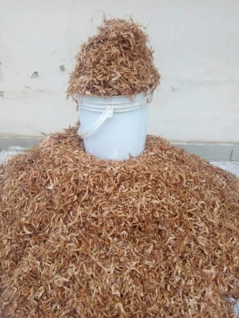 crayfish-bags-for-sale-big-0