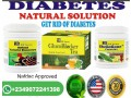 natural-solution-to-diabetes-small-0