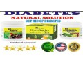 natural-solution-to-diabetes-small-1