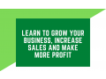 learn-to-grow-your-business-increase-sales-and-make-more-profit-small-0