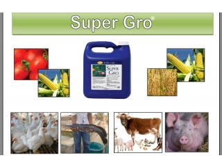 Super Gro Liquid Fertilizer