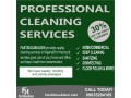professional-cleaning-service-small-5