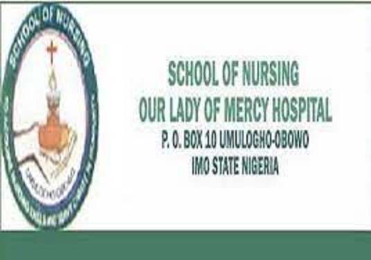 school-of-nursing-umuloghoimo-state-20212022-session-admission-forms-are-on-sales-big-0