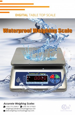 waterproof-tabletop-scale-perfect-for-fish-processing-fields-kasenyi256-0-705-577-823-256-0-775-259-917-big-0